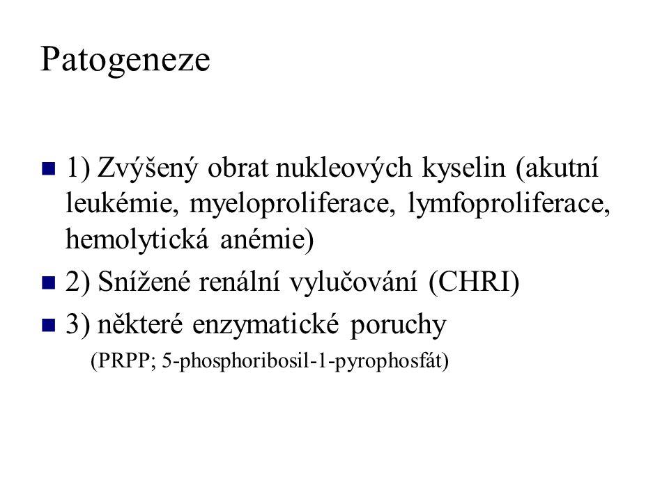 Patogeneze 1) Zvýšený obrat nukleových kyselin (akutní leukémie, myeloproliferace, lymfoproliferace, hemolytická anémie) 2) Snížené renální vylučování (CHRI) 3) některé enzymatické poruchy (PRPP; 5-phosphoribosil-1-pyrophosfát)