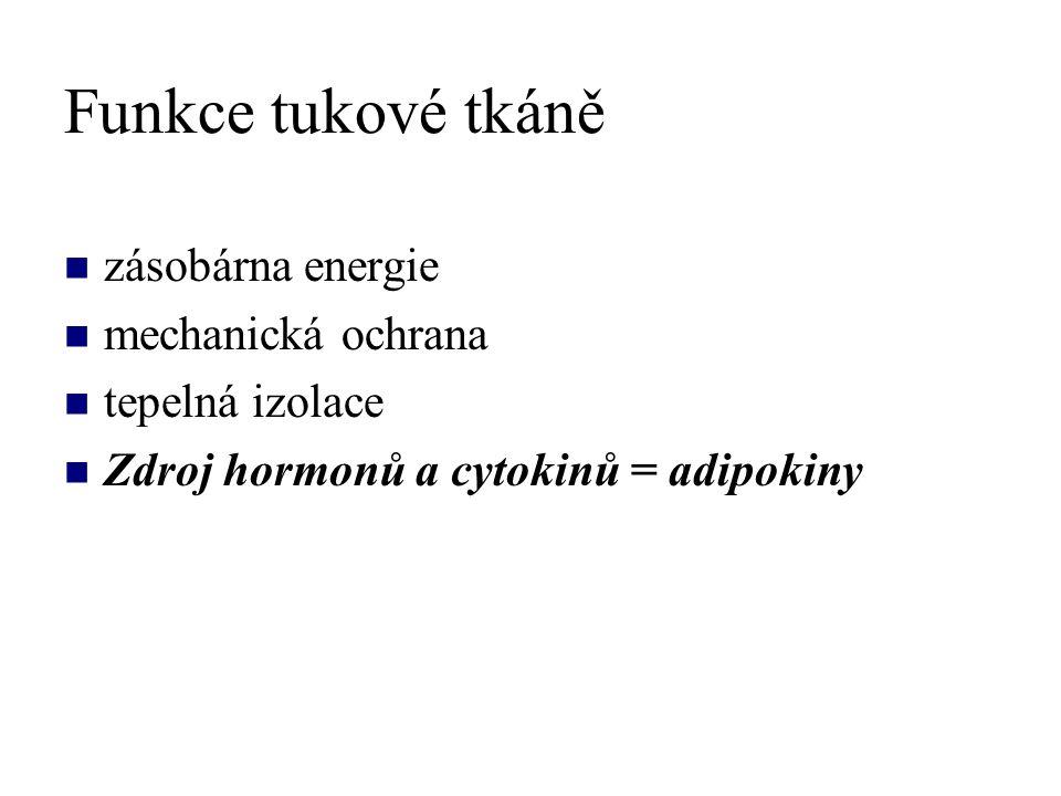 Funkce tukové tkáně zásobárna energie mechanická ochrana tepelná izolace Zdroj hormonů a cytokinů = adipokiny