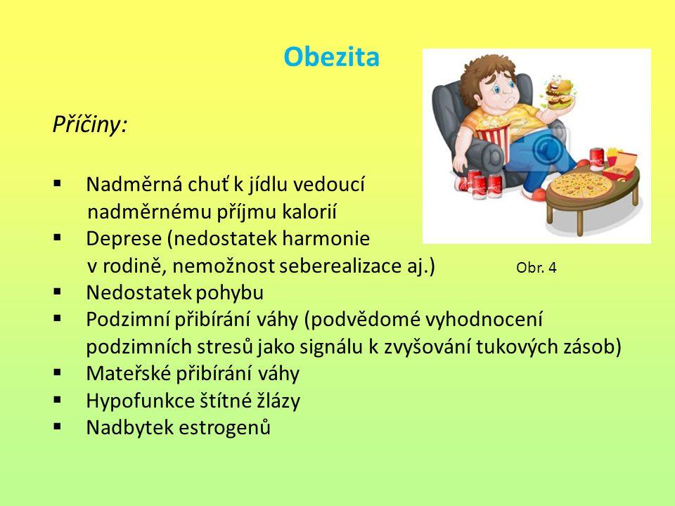 Obezita Příčiny:  Nadměrná chuť k jídlu vedoucí nadměrnému příjmu kalorií  Deprese (nedostatek harmonie v rodině, nemožnost seberealizace aj.) Obr.