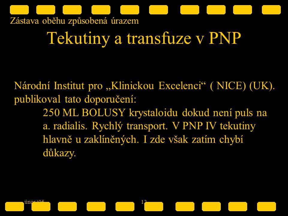 """Zástava oběhu způsobená úrazem únor '0612 Tekutiny a transfuze v PNP Národní Institut pro """"Klinickou Excelenci ( NICE) (UK)."""