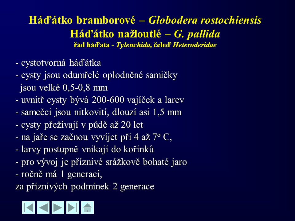 Háďátko bramborové – Globodera rostochiensis Háďátko nažloutlé – G. pallida řád háďata - Tylenchida, čeleď Heteroderidae - cystotvorná háďátka - cysty