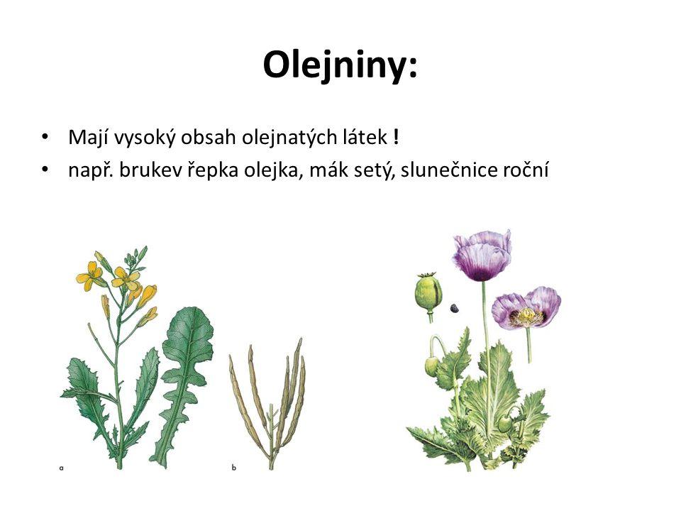 Olejniny: Mají vysoký obsah olejnatých látek ! např. brukev řepka olejka, mák setý, slunečnice roční