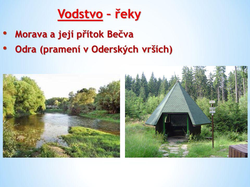Vodstvo – řeky Morava a její přítok Bečva Morava a její přítok Bečva Odra (pramení v Oderských vrších) Odra (pramení v Oderských vrších)