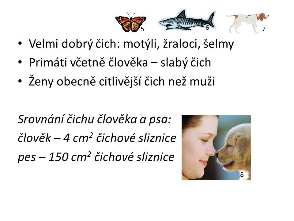 Velmi dobrý čich: motýli, žraloci, šelmy Primáti včetně člověka – slabý čich Ženy obecně citlivější čich než muži Srovnání čichu člověka a psa: člověk – 4 cm 2 čichové sliznice pes – 150 cm 2 čichové sliznice 75 6 8