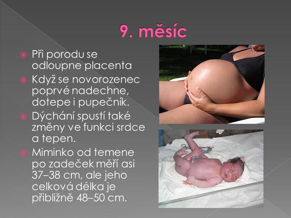 Váha se rychle zvyšuje, děťátko bude mít brzy porodní váhu.