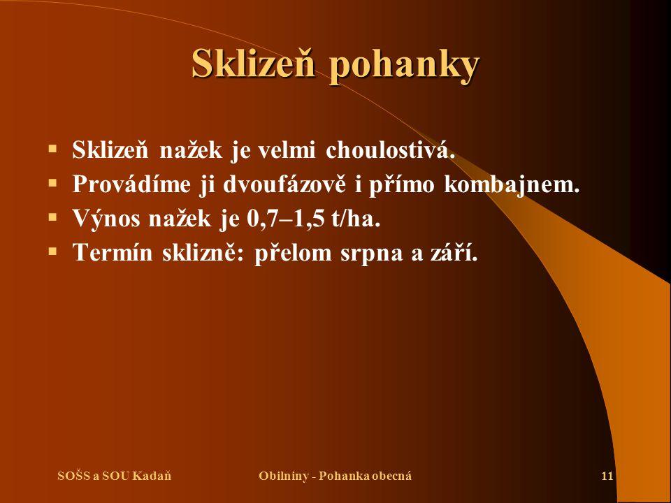 SOŠS a SOU KadaňObilniny - Pohanka obecná11 Sklizeň pohanky  Sklizeň nažek je velmi choulostivá.