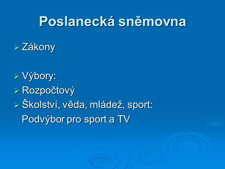 Poslanecká sněmovna  Zákony  Výbory:  Rozpočtový  Školství, věda, mládež, sport: Podvýbor pro sport a TV Podvýbor pro sport a TV