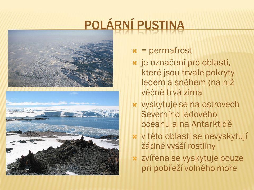  = permafrost  je označení pro oblasti, které jsou trvale pokryty ledem a sněhem (na niž věčně trvá zima  vyskytuje se na ostrovech Severního ledového oceánu a na Antarktidě  v této oblasti se nevyskytují žádné vyšší rostliny  zvířena se vyskytuje pouze při pobřeží volného moře