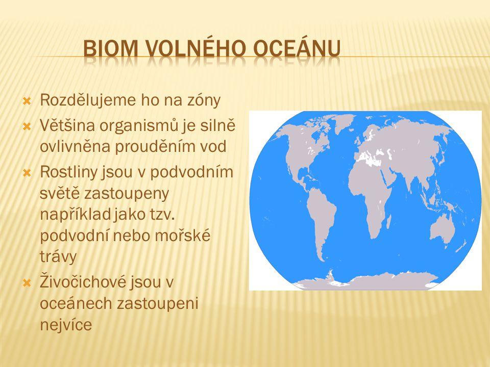  Rozdělujeme ho na zóny  Většina organismů je silně ovlivněna prouděním vod  Rostliny jsou v podvodním světě zastoupeny například jako tzv.