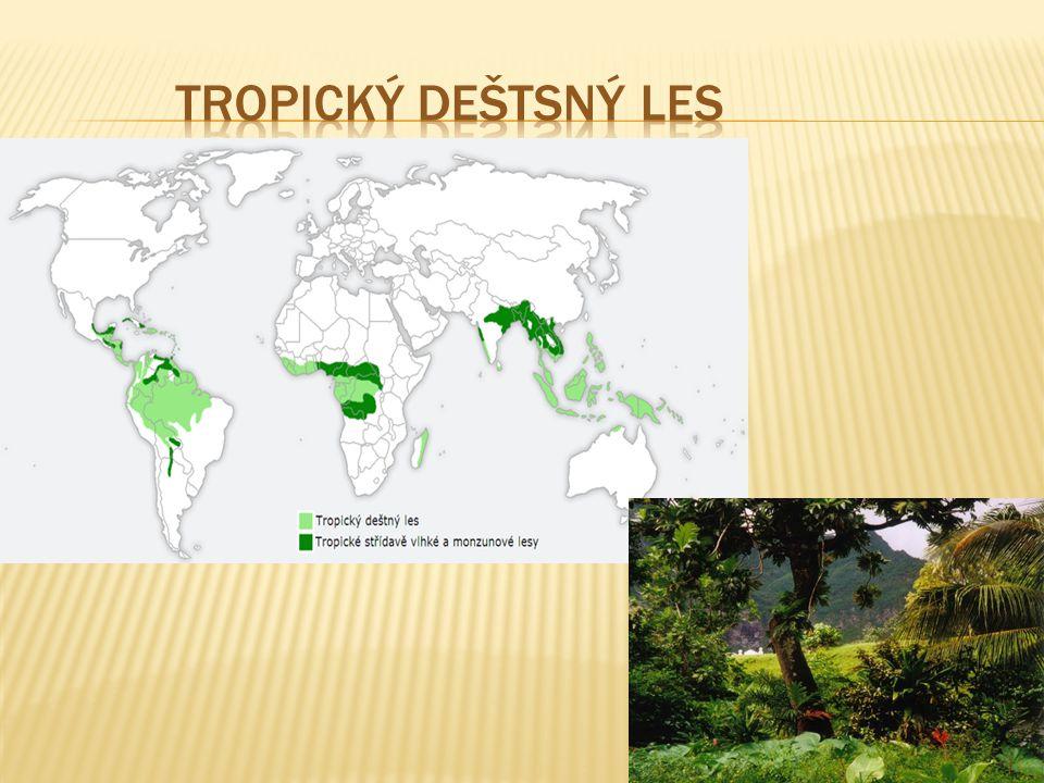 """ je zalesněný biom s trvale teplým a vlhkým podnebím  průměrná teplota 25 °C  roční srážky 2000–8000 mm  tento biom nalezneme zejména v rovníkových oblastech Země  rostou zde jedny z největších stromů na světě  rostliny: palmy, liány, epifysy  živočichové: opice, hmyz, papoušci, kolibříci…  tropické deštné pralesy se nazývají """"klenoty Země , """"plíce Země a """"největší lékárna světa"""