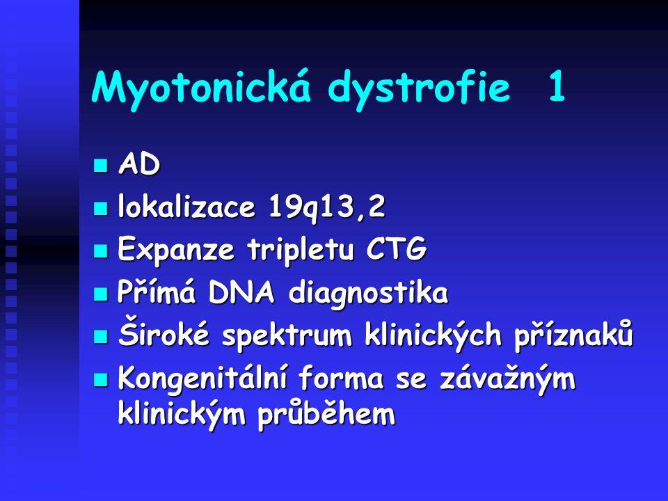 Myotonická dystrofie 1 AD AD lokalizace 19q13,2 lokalizace 19q13,2 Expanze tripletu CTG Expanze tripletu CTG Přímá DNA diagnostika Přímá DNA diagnosti