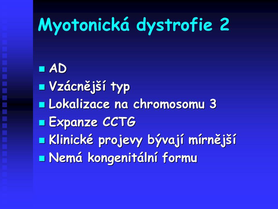 Myotonická dystrofie 2 AD AD Vzácnější typ Vzácnější typ Lokalizace na chromosomu 3 Lokalizace na chromosomu 3 Expanze CCTG Expanze CCTG Klinické proj