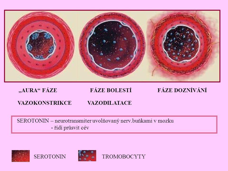 """SEROTONINTROMOBOCYTY,,AURA"""" FÁZE FÁZE BOLESTÍ FÁZE DOZNÍVÁNÍ VAZOKONSTRIKCE VAZODILATACE SEROTONIN – neurotransmiter uvolňovaný nerv.buňkami v mozku -"""