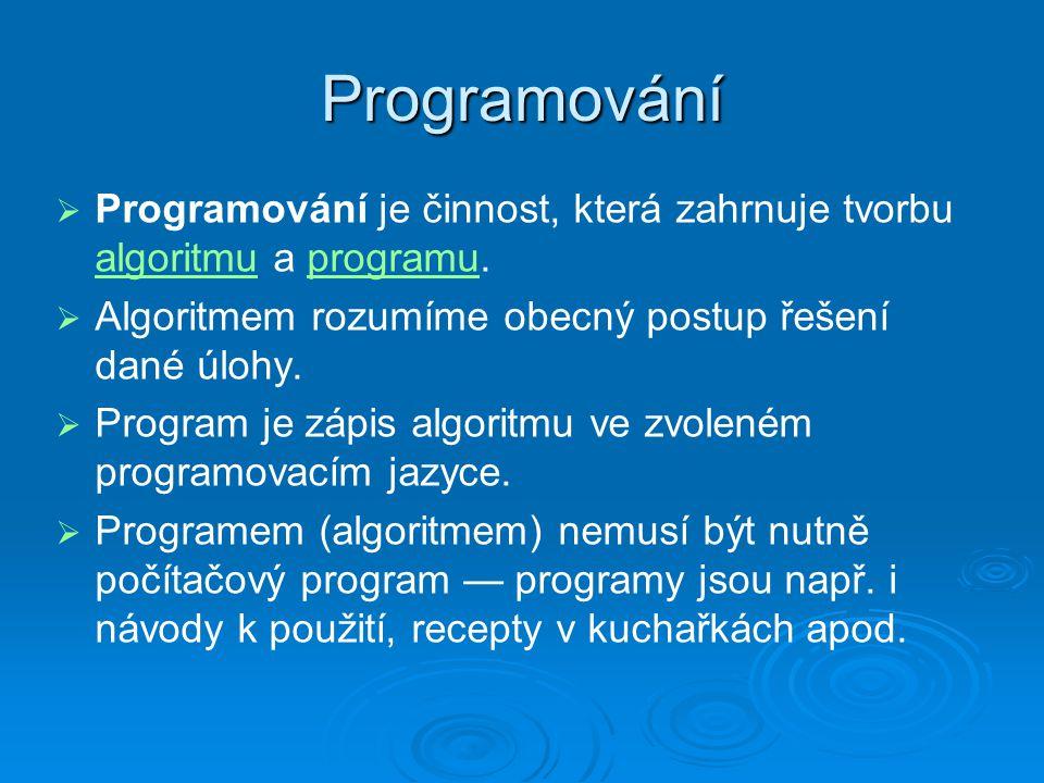 Otázky  Proč se učit programovat?  V jakém programovacím jazyce?