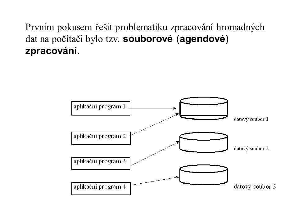 Prvním pokusem řešit problematiku zpracování hromadných dat na počítači bylo tzv. souborové (agendové) zpracování.