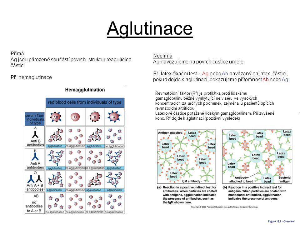 Aglutinace Přímá Ag jsou přirozeně součástí povrch. struktur reagujících částic Př. hemaglutinace Nepřímá Ag navazujeme na povrch částice uměle Př. la