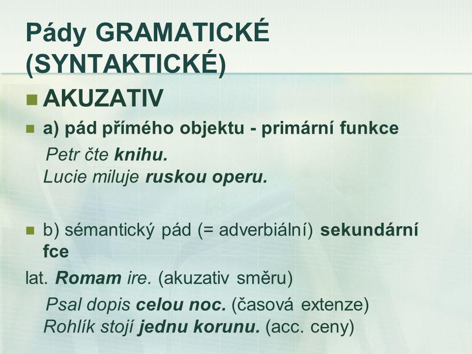 Pády GRAMATICKÉ (SYNTAKTICKÉ) AKUZATIV a) pád přímého objektu - primární funkce Petr čte knihu.