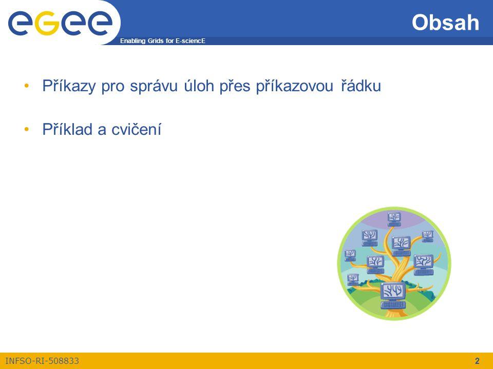 Enabling Grids for E-sciencE INFSO-RI-508833 2 Obsah Příkazy pro správu úloh přes příkazovou řádku Příklad a cvičení