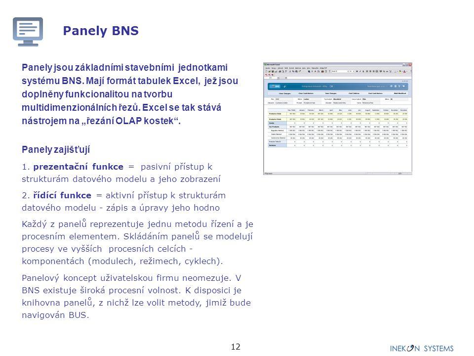 12 Panely BNS Panely jsou základními stavebními jednotkami systému BNS. Mají formát tabulek Excel, jež jsou doplněny funkcionalitou na tvorbu multidim