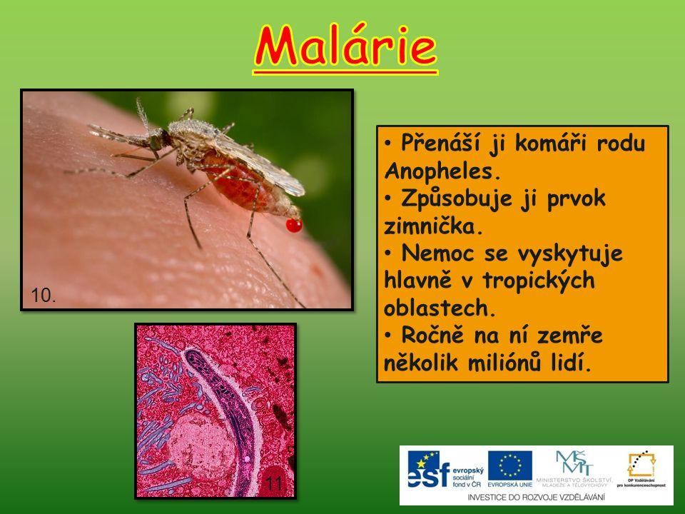 Přenáší ji komáři rodu Anopheles.Způsobuje ji prvok zimnička.