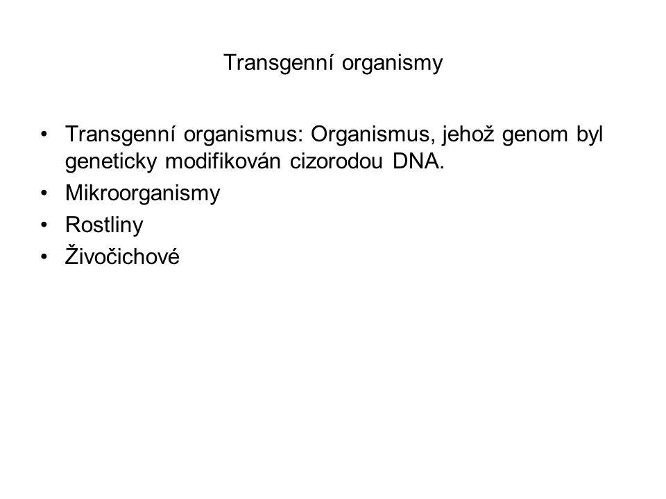 Transgenní organismy Transgenní organismus: Organismus, jehož genom byl geneticky modifikován cizorodou DNA. Mikroorganismy Rostliny Živočichové