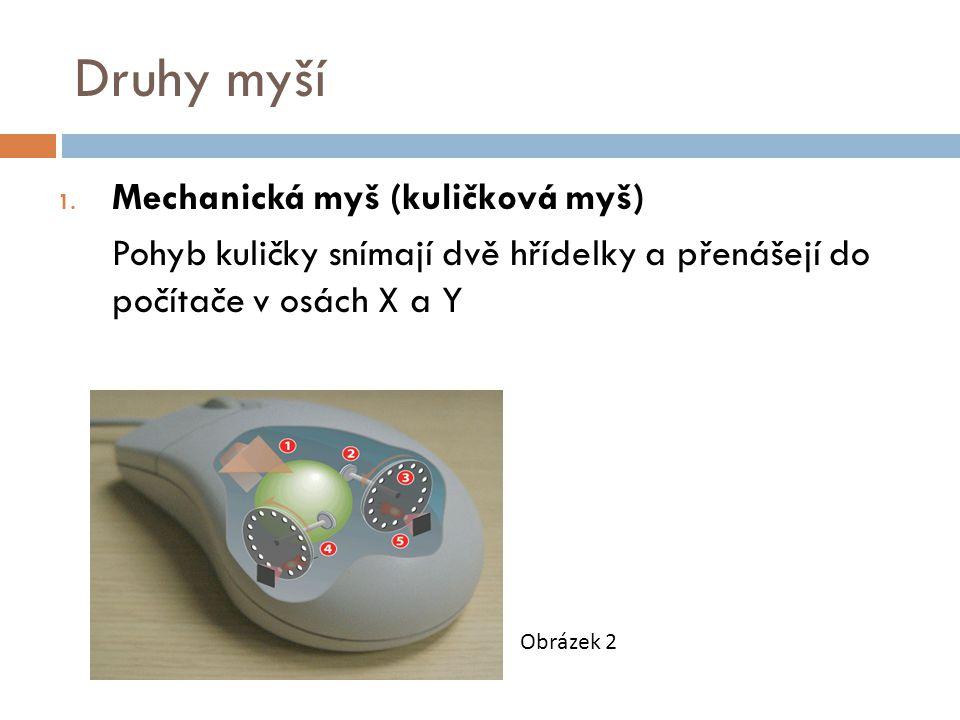 Druhy myší 1.