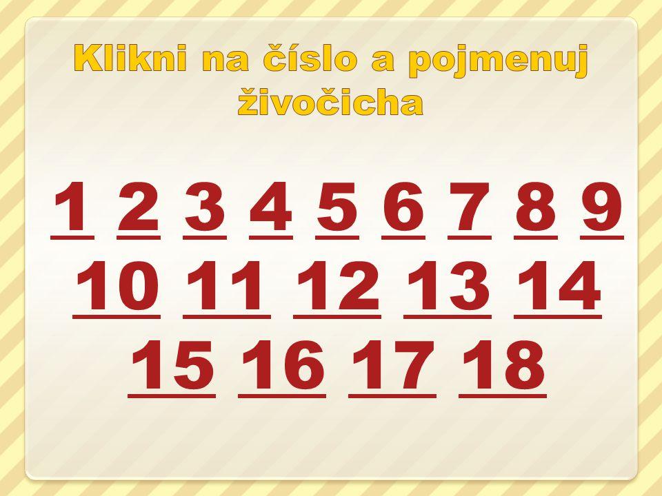 11 2 3 4 5 6 7 8 9 10 11 12 13 14 15 16 17 1823456789 1011121314 15161718