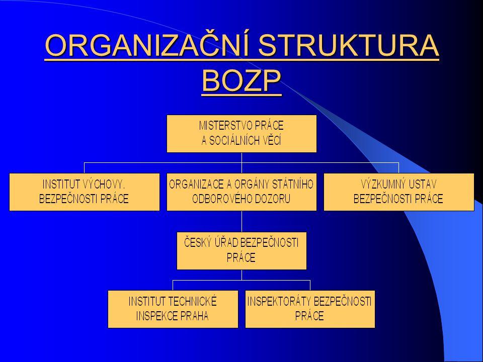 ORGANIZAČNÍ STRUKTURA BOZP
