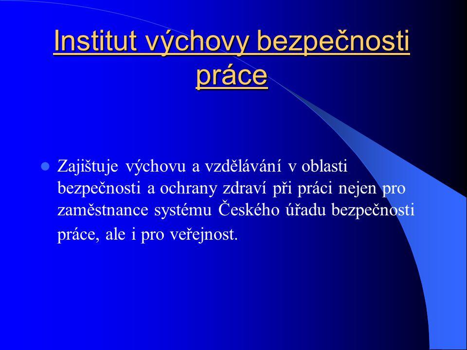 Institut výchovy bezpečnosti práce Zajištuje výchovu a vzdělávání v oblasti bezpečnosti a ochrany zdraví při práci nejen pro zaměstnance systému Českého úřadu bezpečnosti práce, ale i pro veřejnost.