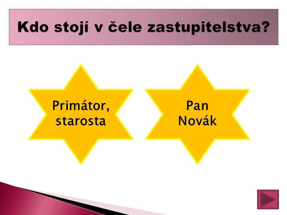 Primátor, starosta Pan Novák