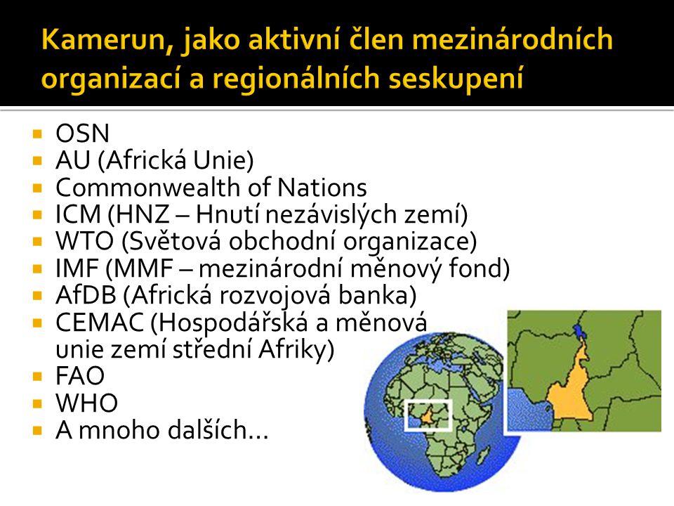  OSN  AU (Africká Unie)  Commonwealth of Nations  ICM (HNZ – Hnutí nezávislých zemí)  WTO (Světová obchodní organizace)  IMF (MMF – mezinárodní měnový fond)  AfDB (Africká rozvojová banka)  CEMAC (Hospodářská a měnová unie zemí střední Afriky)  FAO  WHO  A mnoho dalších…