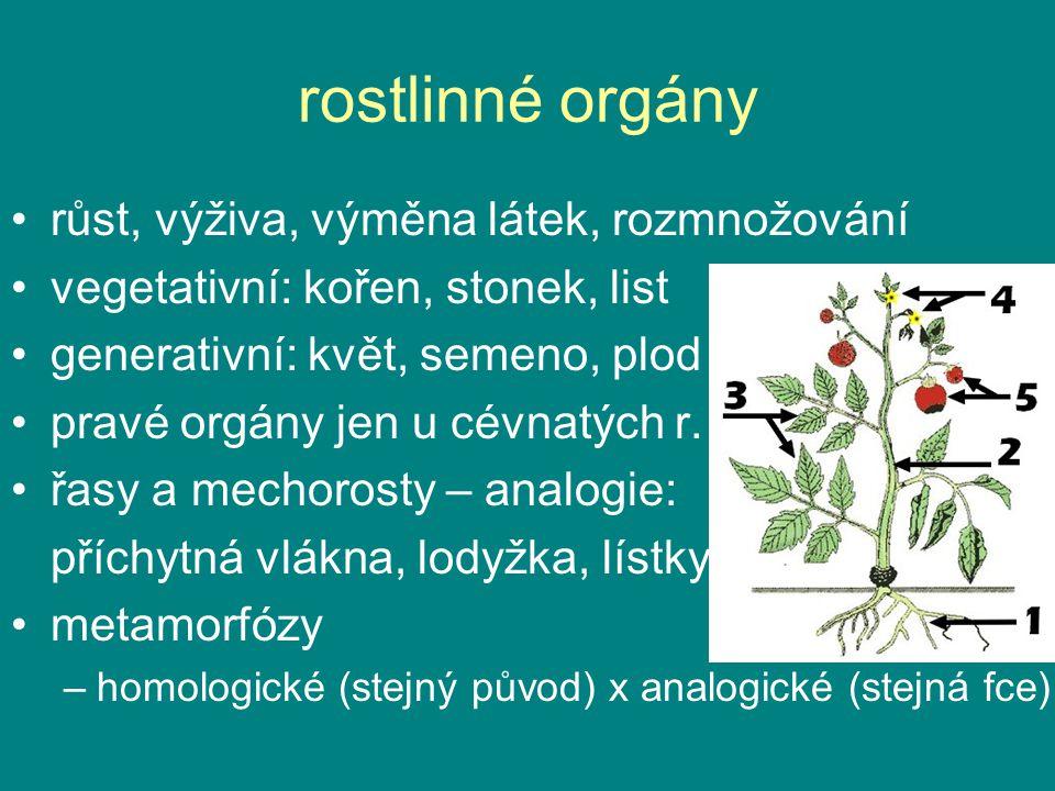 růst, výživa, výměna látek, rozmnožování vegetativní: kořen, stonek, list generativní: květ, semeno, plod (krytosemenné) pravé orgány jen u cévnatých r.