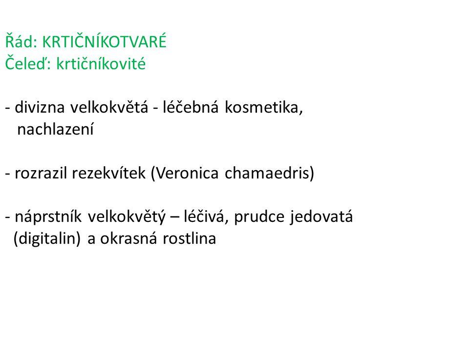 Řád: KRTIČNÍKOTVARÉ Čeleď: krtičníkovité - divizna velkokvětá - léčebná kosmetika, nachlazení - rozrazil rezekvítek (Veronica chamaedris) - náprstník