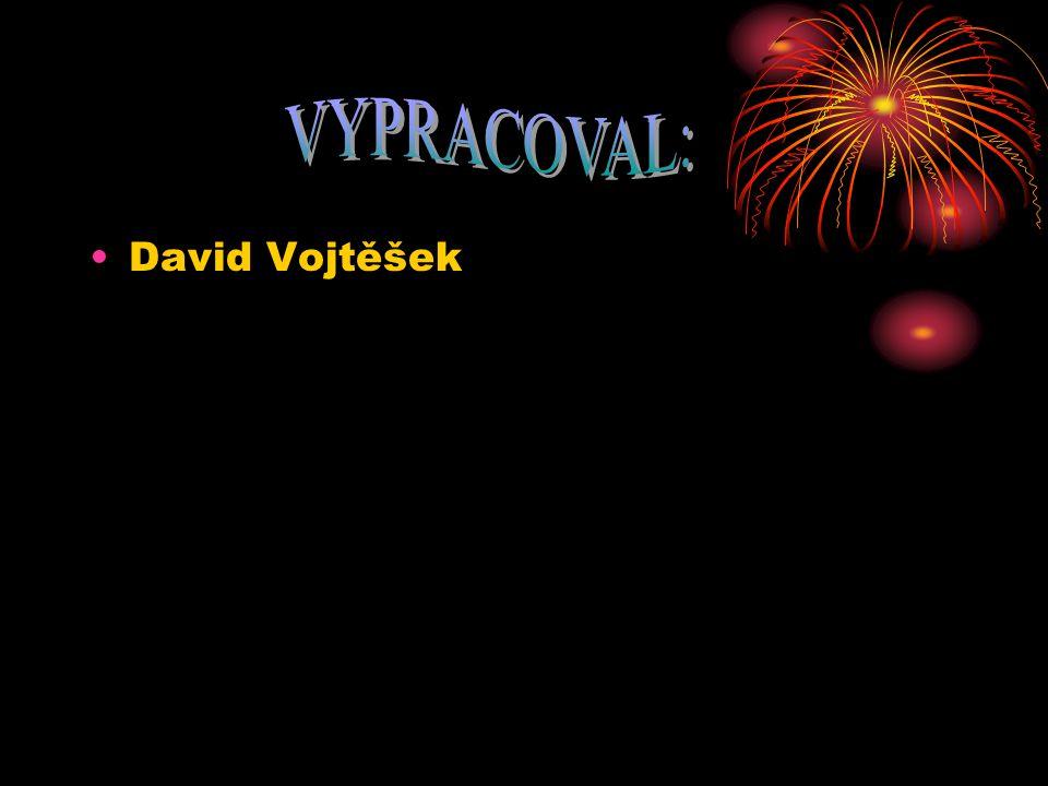 David Vojtěšek