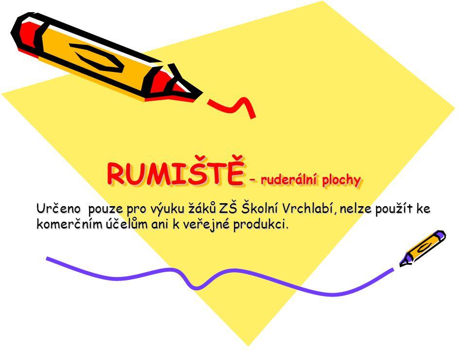 RUMIŠTĚ – ruderální plochy Určeno pouze pro výuku žáků ZŠ Školní Vrchlabí, nelze použít ke komerčním účelům ani k veřejné produkci.
