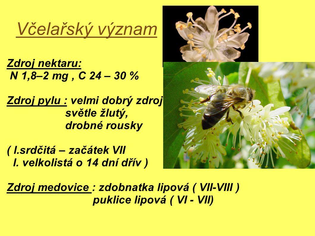 Včelařský význam Zdroj nektaru: N 1,8–2 mg, C 24 – 30 % Zdroj pylu : velmi dobrý zdroj světle žlutý, drobné rousky ( l.srdčitá – začátek VII l.