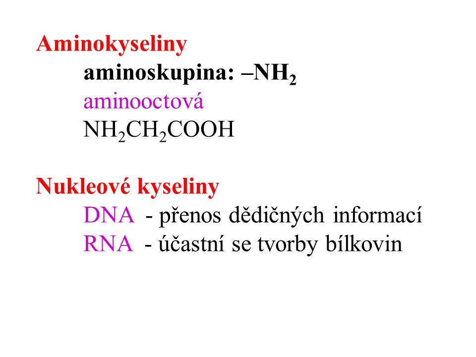 Aminokyseliny aminoskupina: –NH 2 aminooctová NH 2 CH 2 COOH Nukleové kyseliny DNA - přenos dědičných informací RNA - účastní se tvorby bílkovin