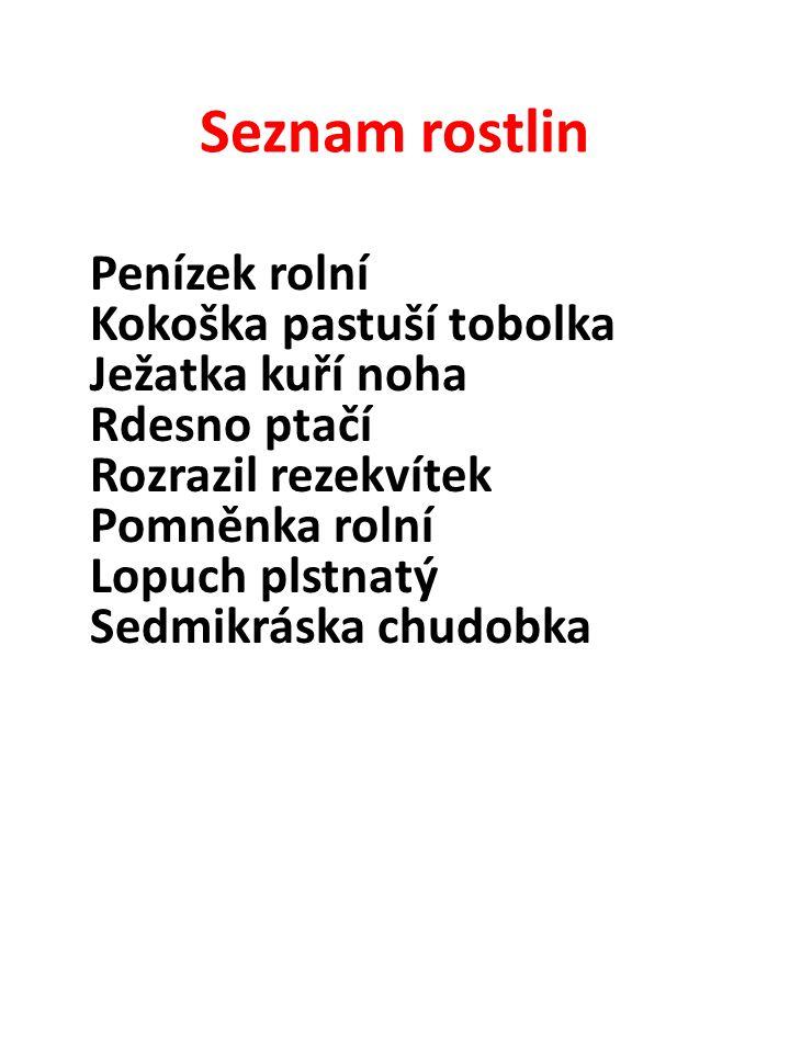 Seznam rostlin Merlík bílý Přeslička rolní Ptačinec žabinec Pýr plazivý Svízel přítula Šťovík tupolistý Popenec břečťanolistý Vikev ptačí