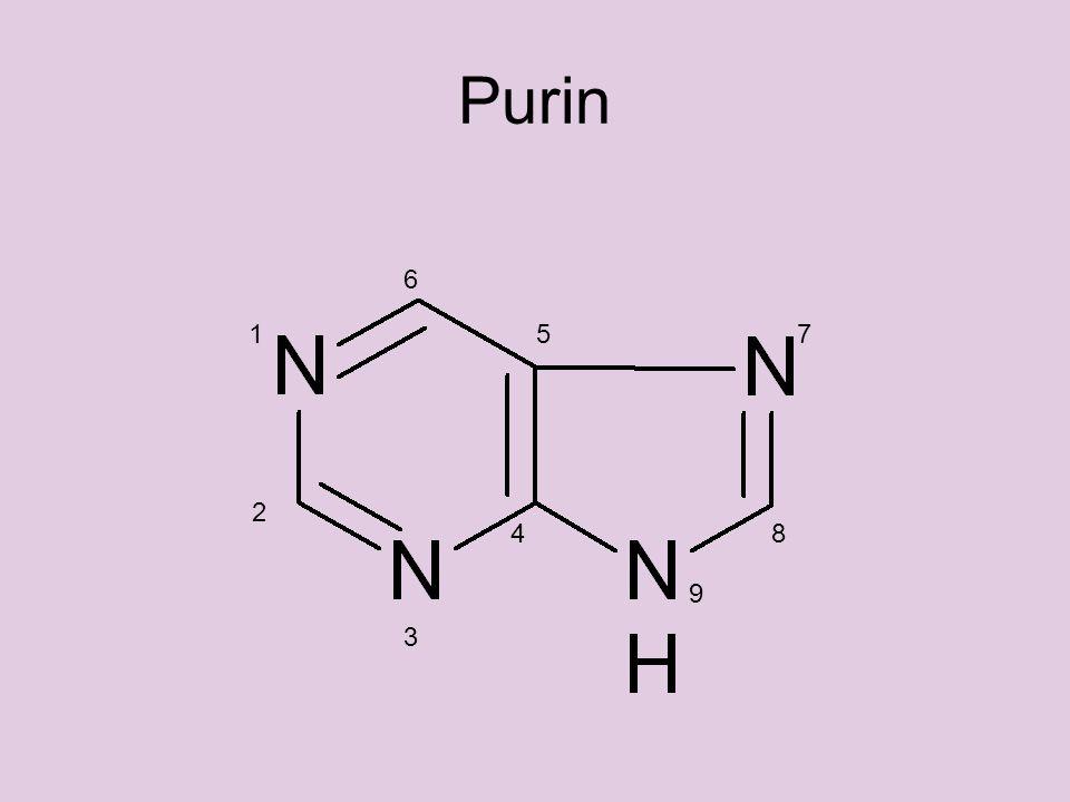 Purin 17 6 5 4 3 2 9 8