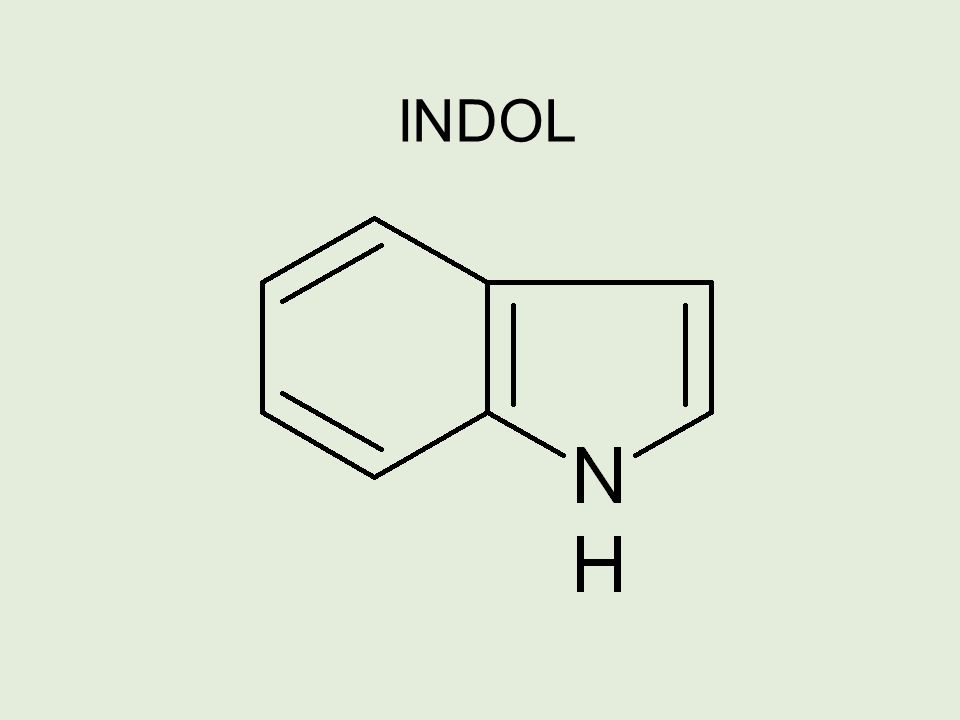 Uracil