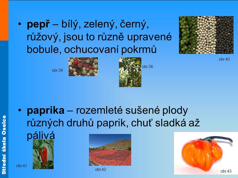 Střední škola Oselce pepř – bílý, zelený, černý, růžový, jsou to různě upravené bobule, ochucovaní pokrmů paprika – rozemleté sušené plody různých dru