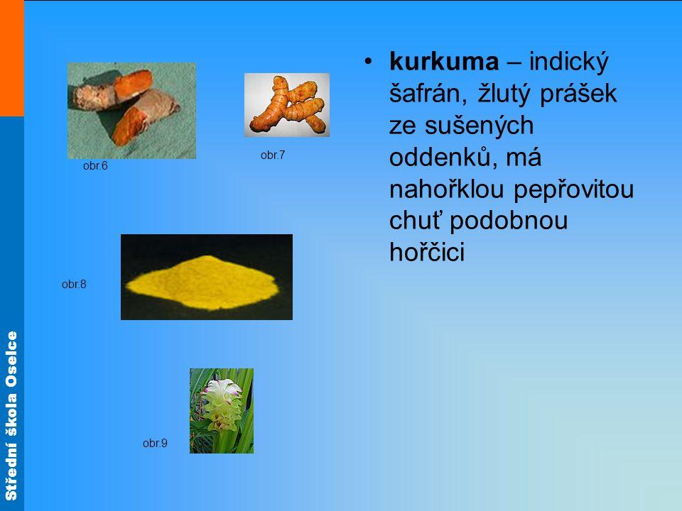 Střední škola Oselce kurkuma – indický šafrán, žlutý prášek ze sušených oddenků, má nahořklou pepřovitou chuť podobnou hořčici obr.6 obr.7 obr.8 obr.9