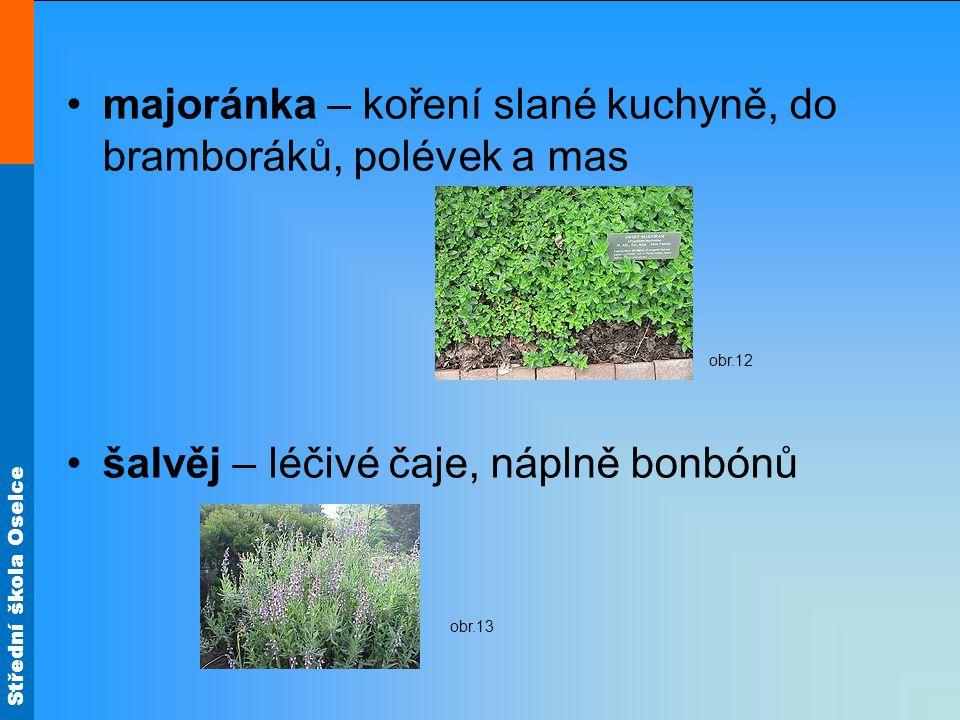 Střední škola Oselce Zdroj materiálů: Literatura: BLÁHA, Ludvík; ŠREK, František.