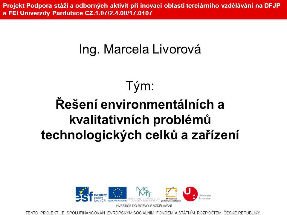 Projekt Podpora stáží a odborných aktivit při inovaci oblasti terciárního vzdělávání na DFJP a FEI Univerzity Pardubice CZ.1.07/2.4.00/17.0107 Ing.