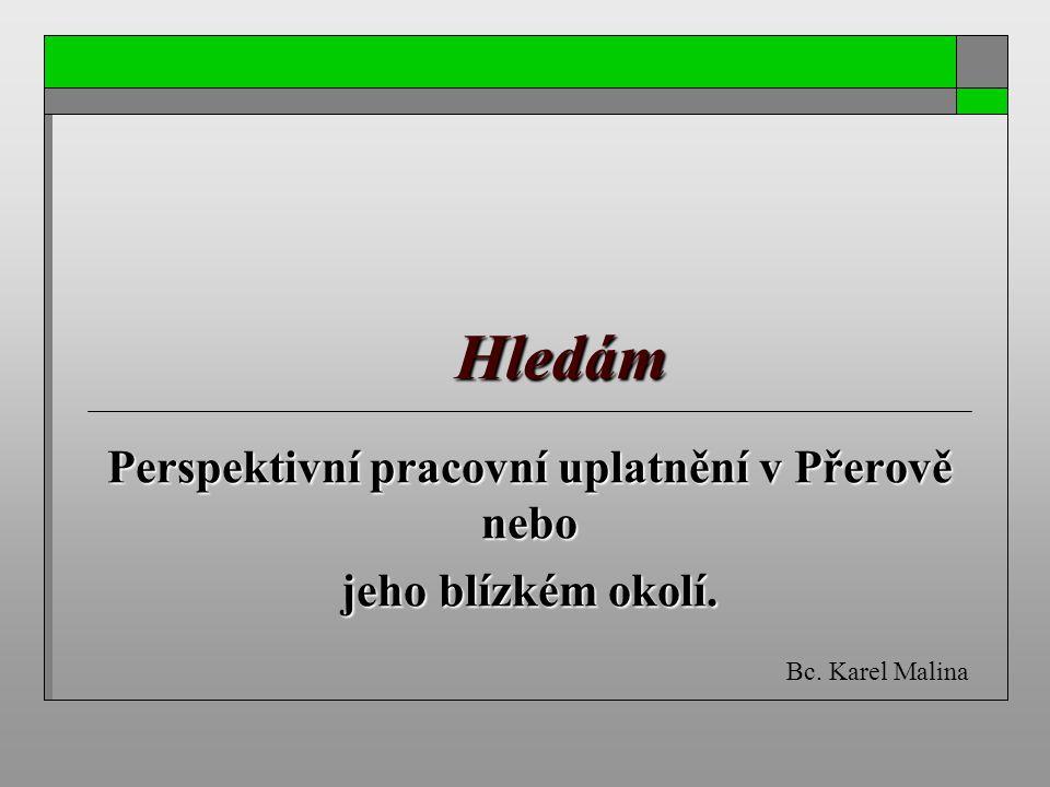 Hledám Perspektivní pracovní uplatnění v Přerově nebo jeho blízkém okolí. Bc. Karel Malina
