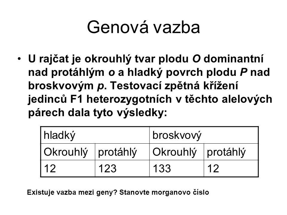 Genová vazba U rajčat je okrouhlý tvar plodu O dominantní nad protáhlým o a hladký povrch plodu P nad broskvovým p. Testovací zpětná křížení jedinců F