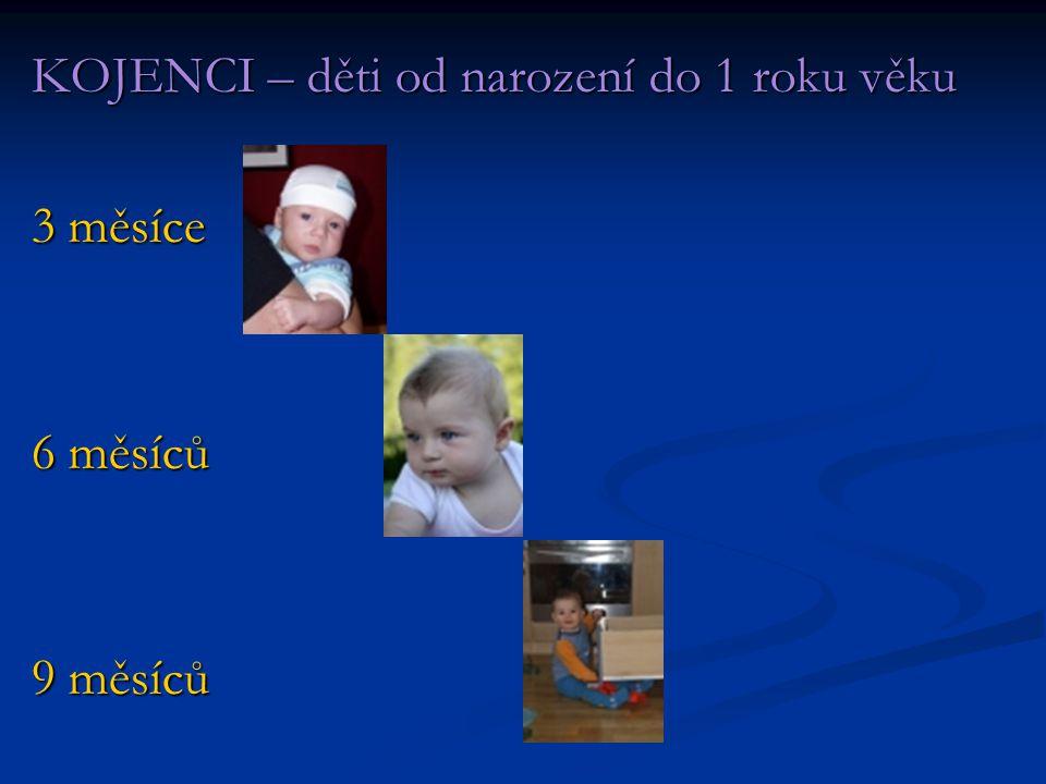 KOJENCI – děti od narození do 1 roku věku 3 měsíce 6 měsíců 9 měsíců