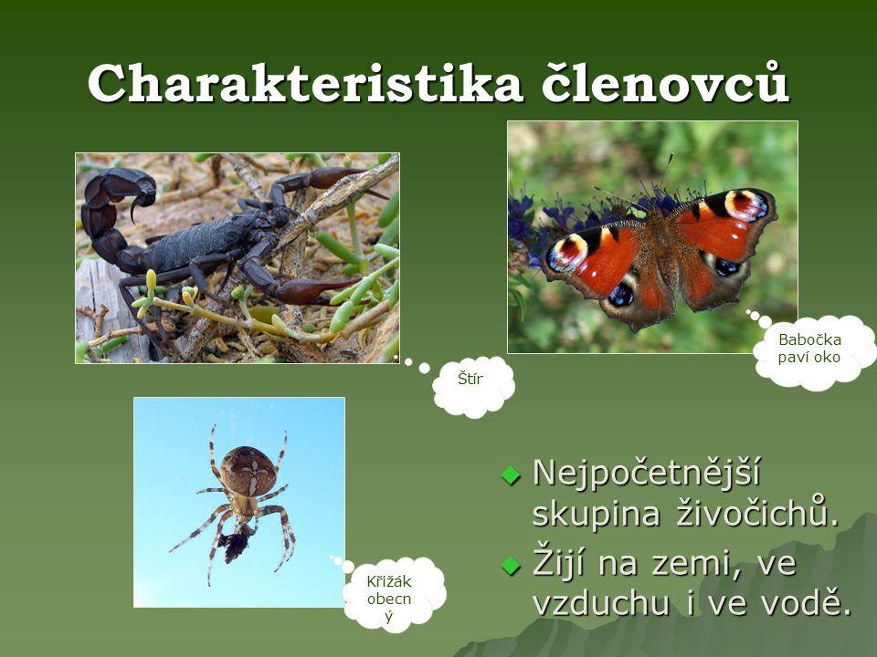 Pavoukovci  Pavoukovci jsou skupina bezobratlých živočichů.