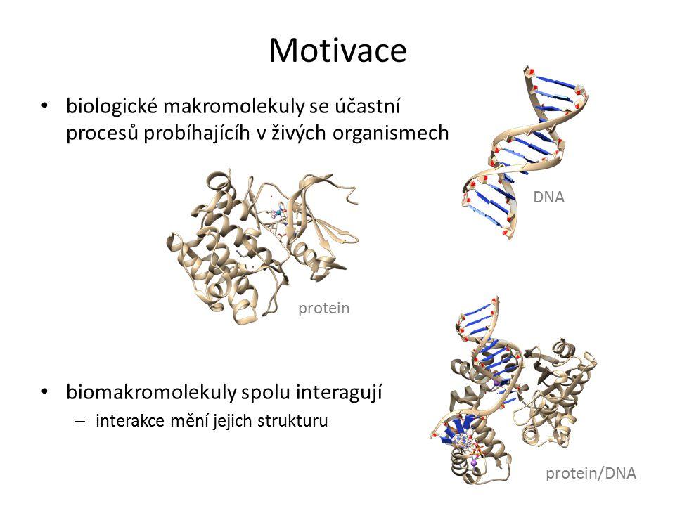 Motivace biologické makromolekuly se účastní procesů probíhajícíh v živých organismech biomakromolekuly spolu interagují – interakce mění jejich struk