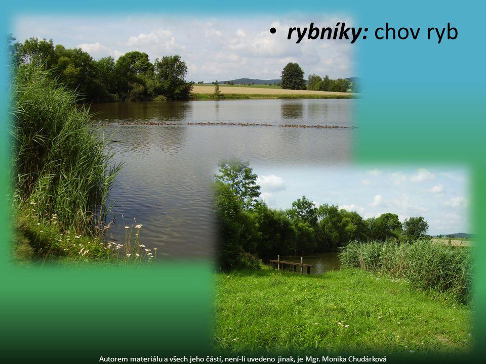 přehrady: funkce- výroba elektřiny - zavlažování polí - ochrana před povodněmi - pitná voda - rekreace Autorem materiálu a všech jeho částí, není-li uvedeno jinak, je Mgr.